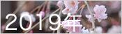 2019年桜ギャラリー