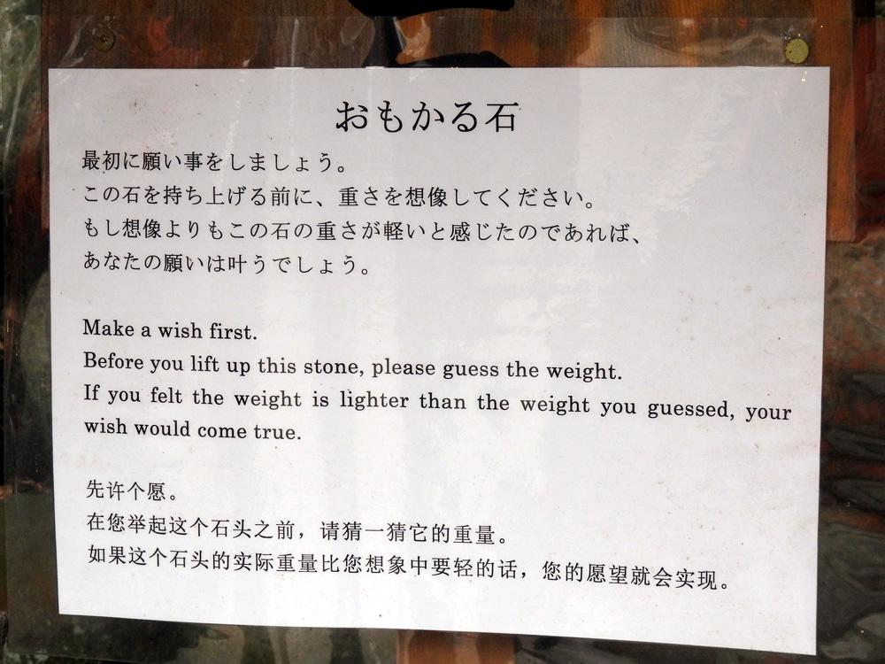 sushimi11